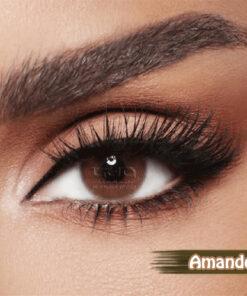 Diva Amande Al Waleed Optics 247x296 - Diva Amande