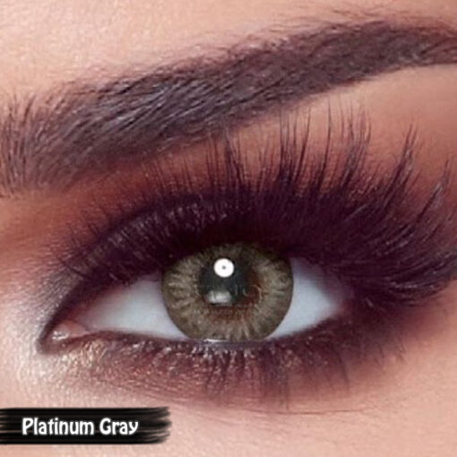 Bella One Day Platinum Gray Alwaleed Optics 510x510 - Bella One Day Contact Lenses