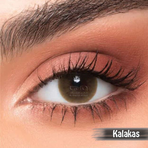 NewLens Kalakas Alwaleed Optics 510x509 - NewLens Kalakas