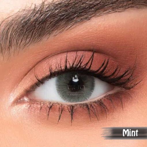 NewLens Mint Alwaleed Optics 510x509 - NewLens Mint